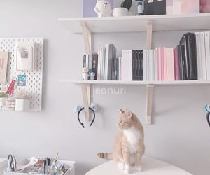 aesthetic, cat, and decor image