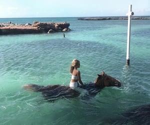 horse, beach, and ocean image