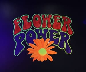 60s, 70s, and flower child image
