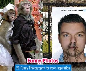 photography, funny photography, and funny photos image