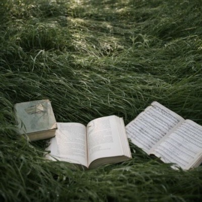 book, calm, and forest image