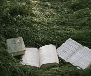 book, forest, and nature image