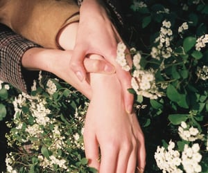 couple, hands, and nature image