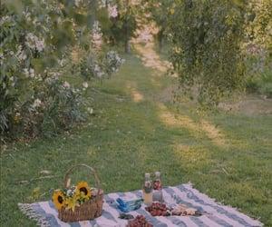 nature, picnic, and food image