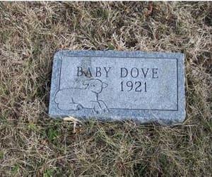 grave, graveyard, and grunge image