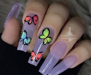 acrylics, butterfly, and clear image