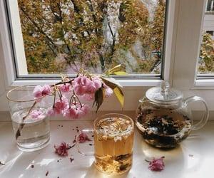 beverage, drinks, and spring image