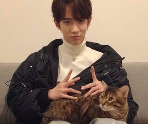 nex7, idol producer, and xinchun image