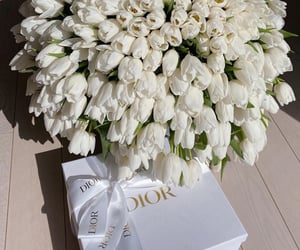 flowers, aesthetic, and dior image