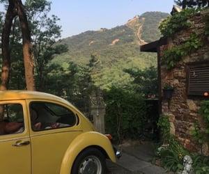 nature, car, and yellow image