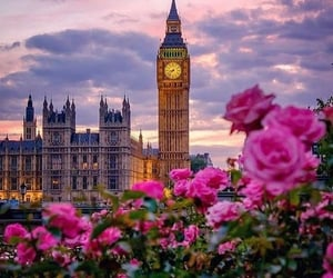 flowers, london, and travel image