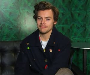 gif, 1d, and harry styles gifs image