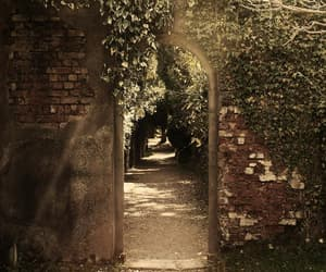 doorway, dreamy, and enchanted image