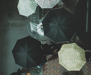 umbrella, rain, and people image