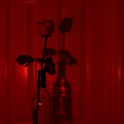 36 images about red aesthetic on We Heart It | See more about aesthetic, red  and tumblr