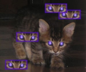 archive, cyber, and purple image