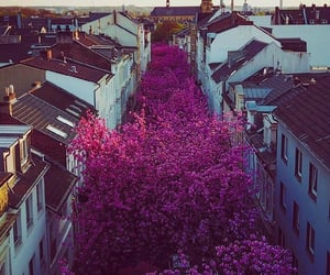city and flowers image