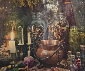 aesthetic, herbs, and magic image