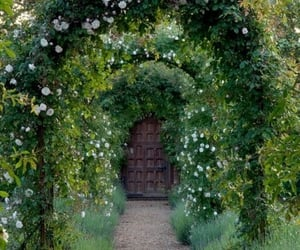 garden, door, and nature image