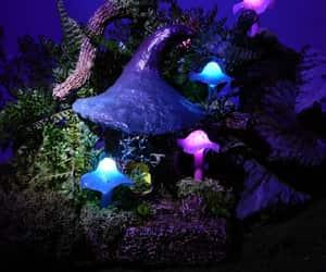 enchanted, Fairies, and fantasy image