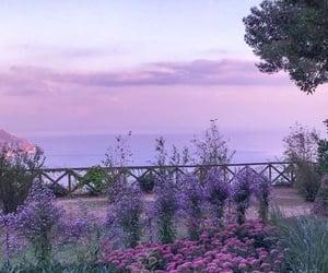 aesthetics, beautiful, and purple image