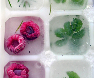 ice, raspberry, and fruit image