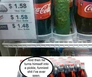 funny, funny pics, and funny pictures image