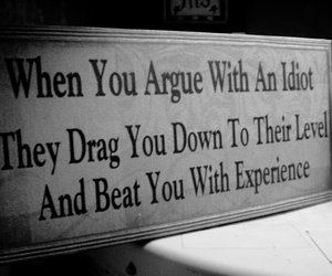 quote and idiot image