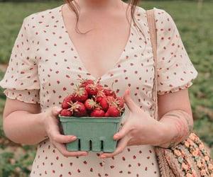 basket, style, and fruit image