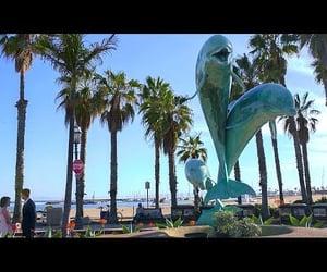 beach, california, and socal image