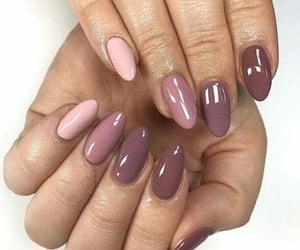 manicure, nailart, and uñas image
