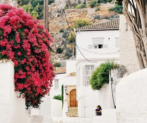 architecture, blossoms, and Greece image
