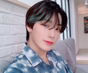 blue shirt, brown hair, and san image