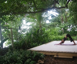 green, travel, and yoga image