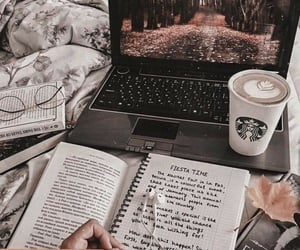 book, study, and autumn image