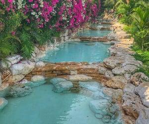 bali, garden, and pool image