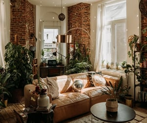 apartment, couch, and cozy image