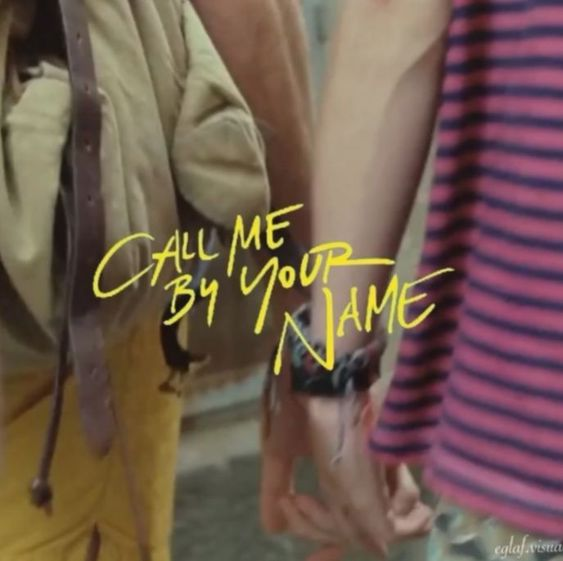 article, series, and call me by your name image