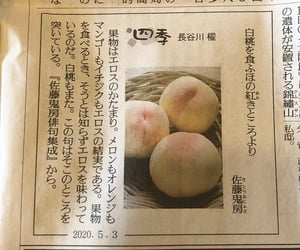 japanese, word, and newspaper image