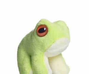 archive, cinnamon roll, and frog image