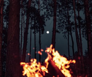 adventure, camp, and campfire image