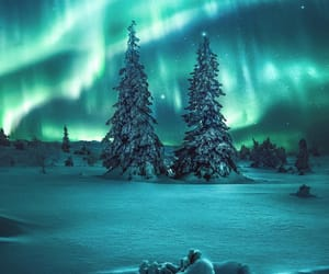 nature, northern lights, and natural park image