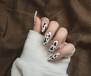 cow, moo, and cow nails image