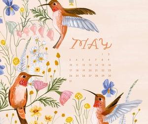 art, birds, and calendar image