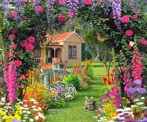 flowers, garden, and cat image