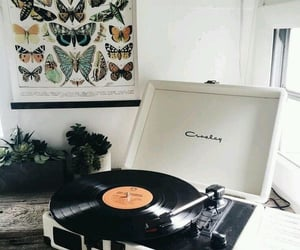 music, butterflies, and room image