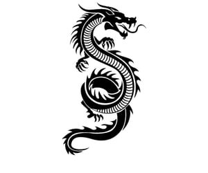 black and white, dragon, and feed image