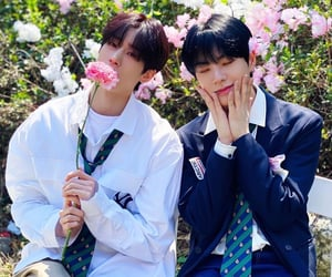 cute, flowers, and seungwoo image