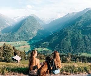 animals, austria, and besties image