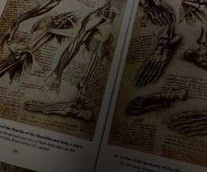 art, drawings, and Leonardo da Vinci image